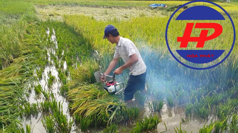 Máy gặt lúa 2 thì HP17A
